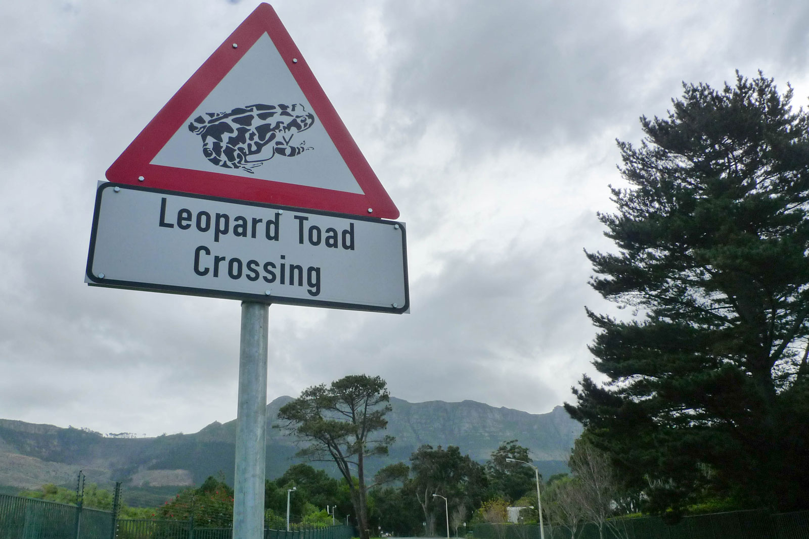 loved the nature-friendly signs in Cape Town